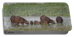 Portable Battery Charger featuring the photograph Capybara by Wade Aiken