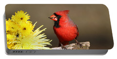 Portable Battery Charger featuring the photograph Cardinal And Chrysanthemums by Sheila Brown