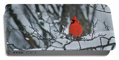 Cardinal And Snow Portable Battery Charger