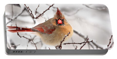 Cardinal Beauty Portable Battery Charger