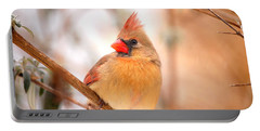 Portable Battery Charger featuring the photograph Cardinal Bird Female by Peggy Franz