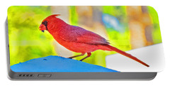 Cardinal Blue Portable Battery Charger