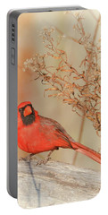 Cardinal In Fall  Portable Battery Charger