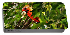 Cardinal In Tree Portable Battery Charger
