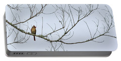 Cardinal In Tree Portable Battery Charger by Richard Rizzo