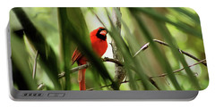 Cardinal Spy Portable Battery Charger