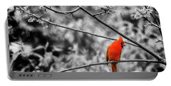 Cardinal... Portable Battery Charger