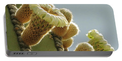 Portable Battery Charger featuring the photograph Cardon Cactus Flowers by Marilyn Smith