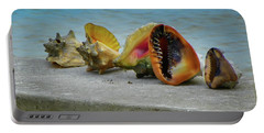 Portable Battery Charger featuring the photograph Caribbean Charisma by Karen Wiles