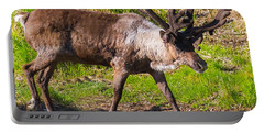 Caribou Antlers In Velvet Portable Battery Charger by Allan Levin