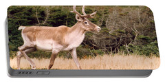 Caribou Portable Battery Charger