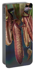 Carnivorous Pitcher Plant Portable Battery Charger by Suzanne Gaff