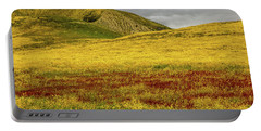 Portable Battery Charger featuring the photograph Carrizo  Plain Super Bloom 2017 by Peter Tellone
