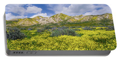 Carrizo Spring Portable Battery Charger