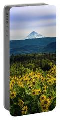 Cascade Spring Portable Battery Charger