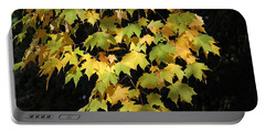 Portable Battery Charger featuring the photograph Cascading Leaves by Doris Potter