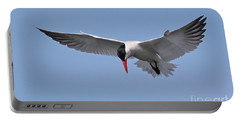Caspian Tern Portable Battery Charger