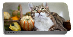 Cat And Pumpkins Portable Battery Charger