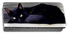 Cat Conditioner Portable Battery Charger