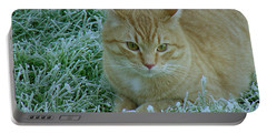 Cat In Frosty Grass Portable Battery Charger by Shirley Heyn