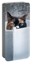 Cat In The Box Portable Battery Charger by Laura Melis