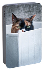 Portable Battery Charger featuring the photograph Cat In The Box by Laura Melis
