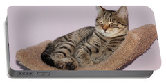 Portable Battery Charger featuring the photograph Cat-nap by Debbie Stahre