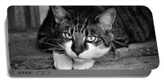 Cat Naps 2 Portable Battery Charger
