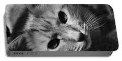 Cat Naps Portable Battery Charger