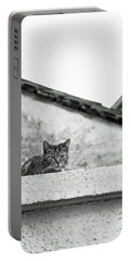 Cat On A Roof, Varenna Portable Battery Charger