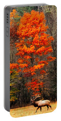 Cataloochee Color Portable Battery Charger