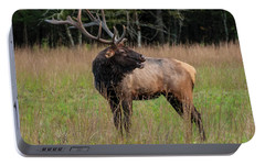 Portable Battery Charger featuring the digital art Cataloochee Valley Elk  by Chris Flees