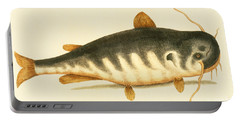 Catfish Portable Battery Charger by Mark Catesby