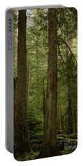 Cathedral Grove Portable Battery Charger