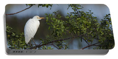 Cattle Egret In The Morning Light Portable Battery Charger