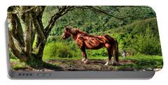 Cavalla Plains Horse - Cavallo Al Pian Della Cavalla Portable Battery Charger