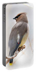 Cedar Wax Wing Portable Battery Charger by Jim Fillpot
