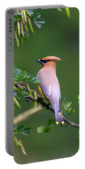 Cedar Waxwing 1 Portable Battery Charger