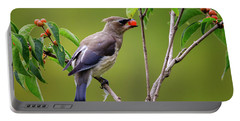 Portable Battery Charger featuring the photograph Cedar Waxwing 2 by Gary Hall