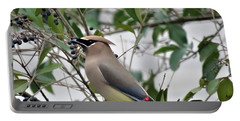 Cedar Waxwing 3 Portable Battery Charger by Kathy Long