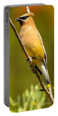 Cedar Waxwing Portable Battery Charger by Adam Jewell