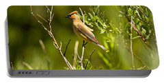 Cedar Waxwing At Glacier Portable Battery Charger by Adam Jewell