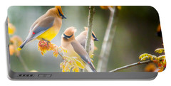 Portable Battery Charger featuring the photograph Cedar Waxwing Beauty by Parker Cunningham