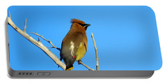 Cedar Waxwing Portable Battery Charger by Dianne Cowen