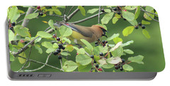 Cedar Waxwing Eating Berries Portable Battery Charger by Maili Page