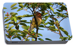 Cedar Waxwing Portable Battery Charger by Mark A Brown
