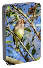 Cedar Waxwing Perch II Portable Battery Charger by Karen Jorstad