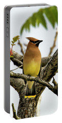 Cedar Waxwing - Spring Visitor Portable Battery Charger
