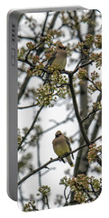 Cedar Waxwings In A Blossoming Tree Portable Battery Charger