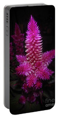 Celosia Intenz Portable Battery Charger